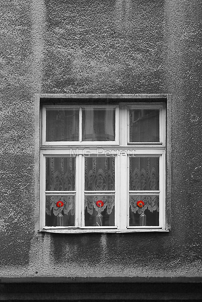 Three red flowers by M G  Pettett