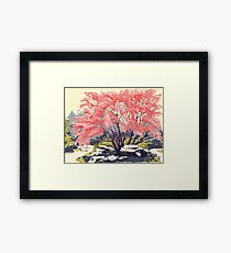 Cherry Blossoms at Denver Botanic Gardens Framed Print