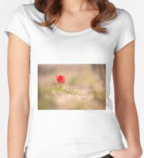 Red Desert Tulip (Tulipa systola)  Women's Fitted Scoop T-Shirt