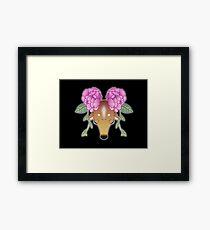 Cervidae Framed Print