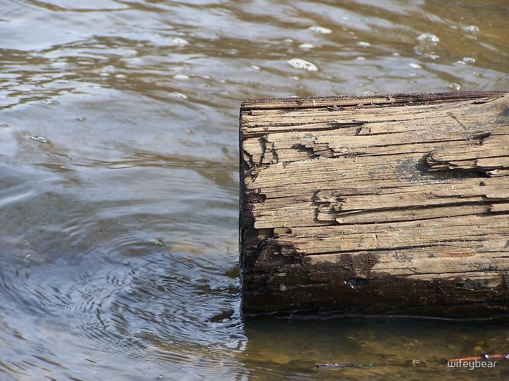 water log by wifeybear