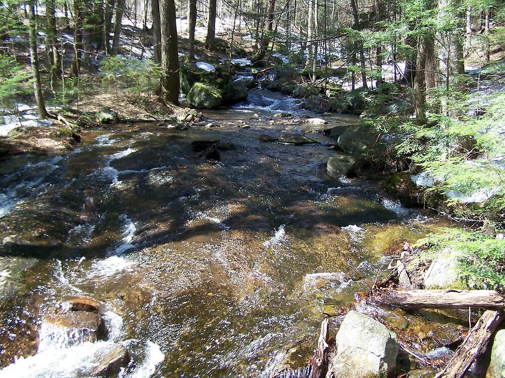adirondack stream by Leah wilson
