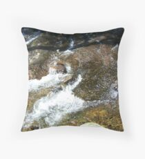 Color of the Adirondacks Throw Pillow