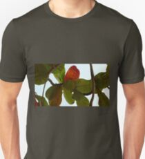 Autumn Leaves 3 Unisex T-Shirt