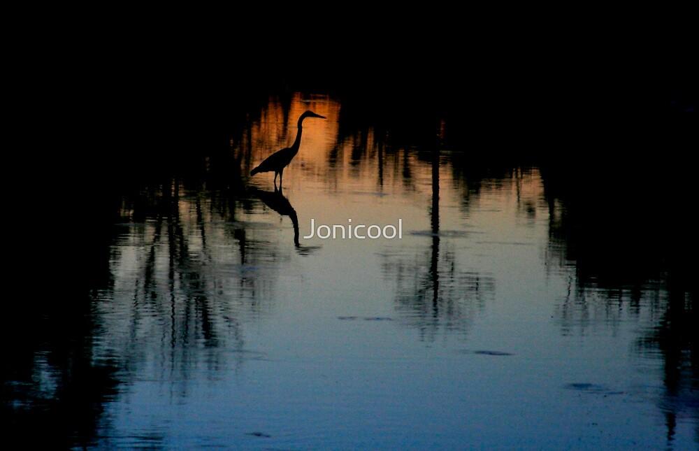 Twilight Silhouette by Jonicool