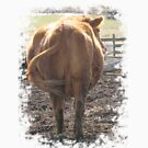 Cowzass by Darlene Ruhs