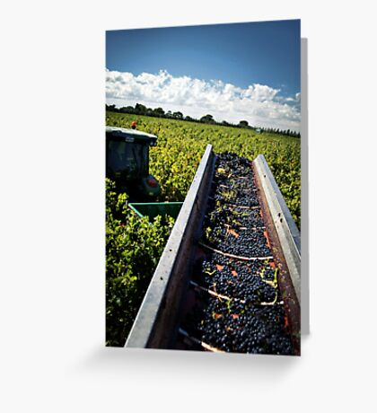 The Last Row of Harvest Greeting Card