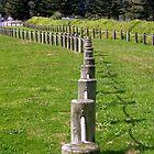 Grass Walkway by lezvee