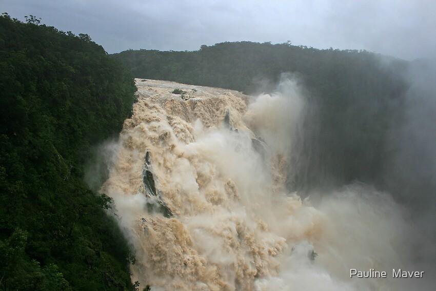 Barron Falls in flood by Pauline  Maver