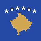 Kosovo Flag by Omar Dakhane