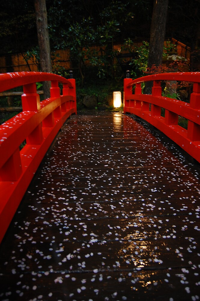 Cherry Blossom Bridge by Melanie  McQuoid