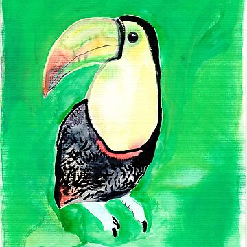 Toucan in green by TheLastOlympia