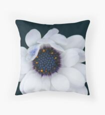 Erigeron divergens (daisy) Throw Pillow