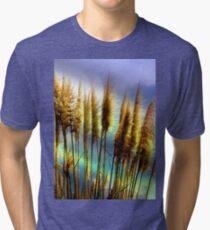 Catching A Few Rays II Tri-blend T-Shirt