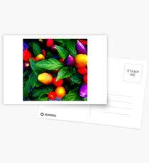 """Thai Chillies . ."" Postcards"