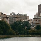 Central Park, New York by smithandcompany