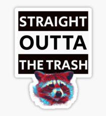 Funny Raccoon Trash Panda t shirt Sticker
