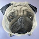 Pug on purple by Carole Russell