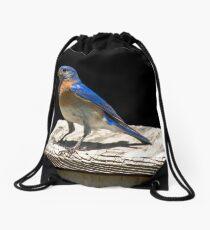 Male Blue Bird Portrait Drawstring Bag