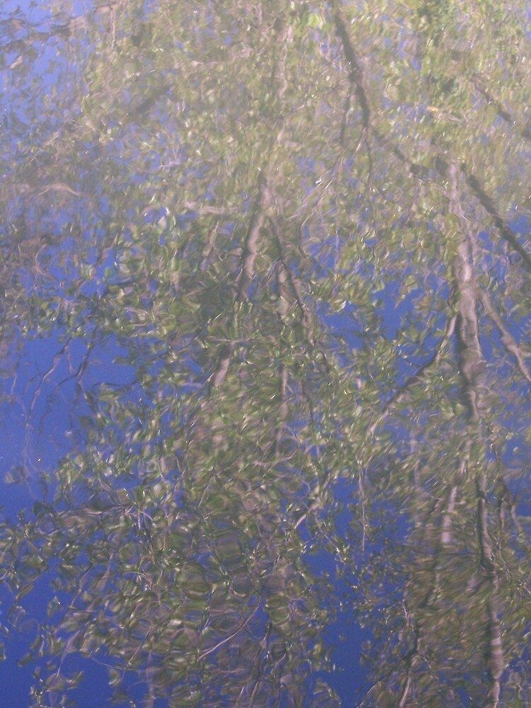 Reflected Tree by clou