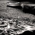 Calm Before The Storm by Alan Watt