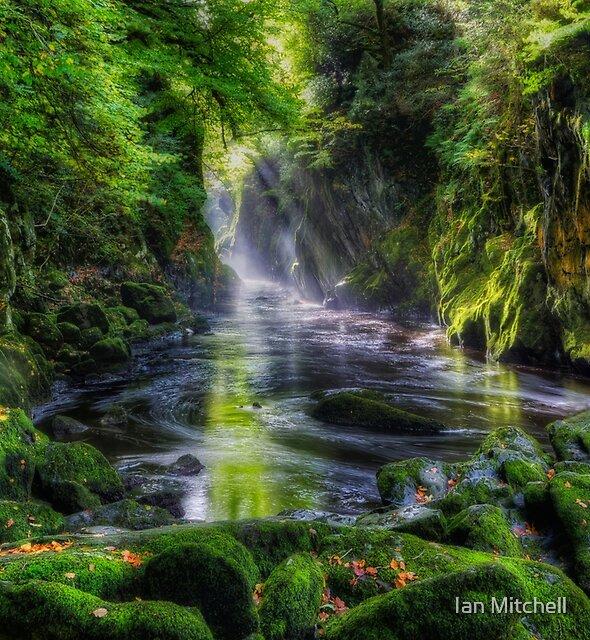 Fairy Glen  by Ian Mitchell