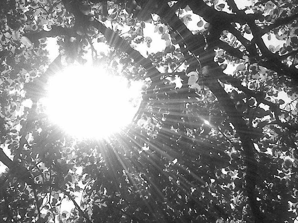 Alex's tree by sarastu