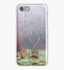 Image twenty iPhone Case/Skin