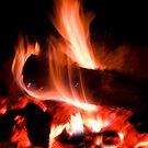 Burning log by Daniel Knights