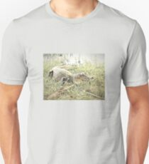 Caiman on the grass Unisex T-Shirt