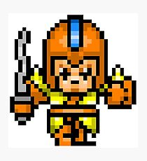 8bit Game Character: Leather Knight 2 Photographic Print