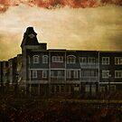 Welcome Home, Sanitarium by Scott Ruhs