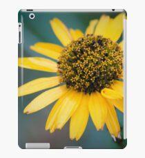 Sun Pedals iPad Case/Skin