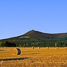 Bennachie by beavo
