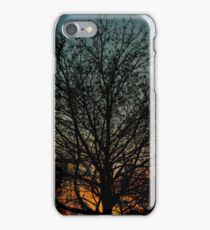 Sunset Sihouette iPhone Case/Skin