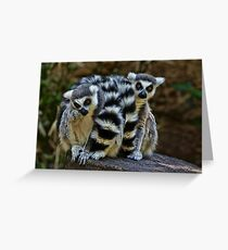 Twin Lemurs Greeting Card