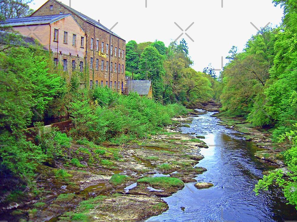 River walk by Tom Gomez