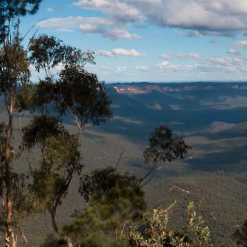 Sublime Point, Blue Mountains, NSW, Australia by roger