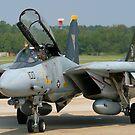 F-14 Tomcat by ScottH711