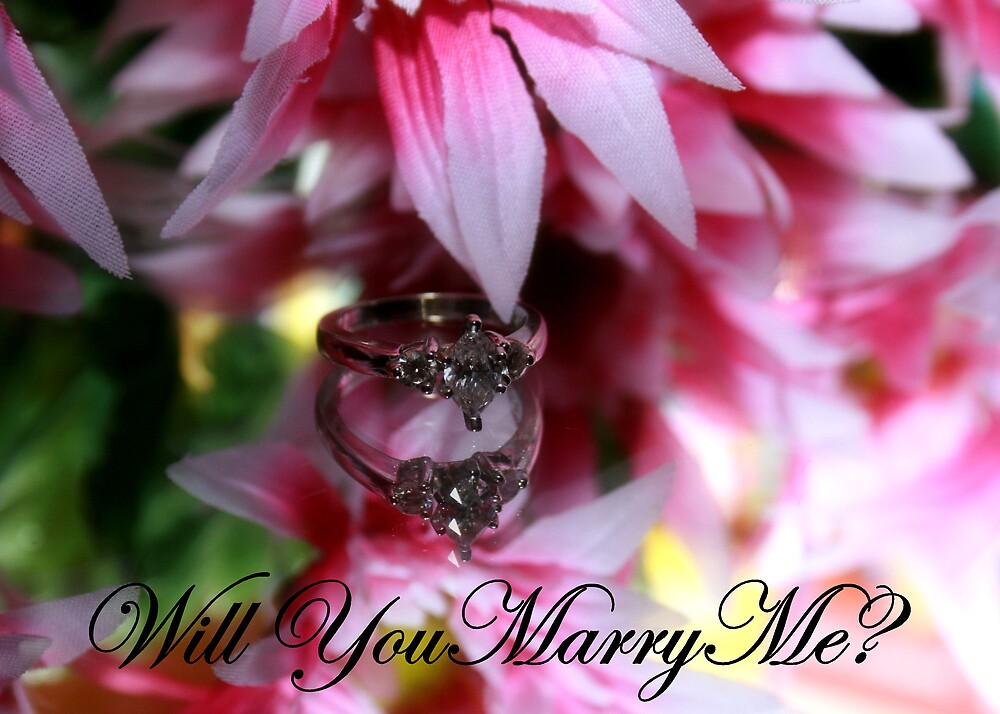Will you Marry Me? by Stacey Lynn