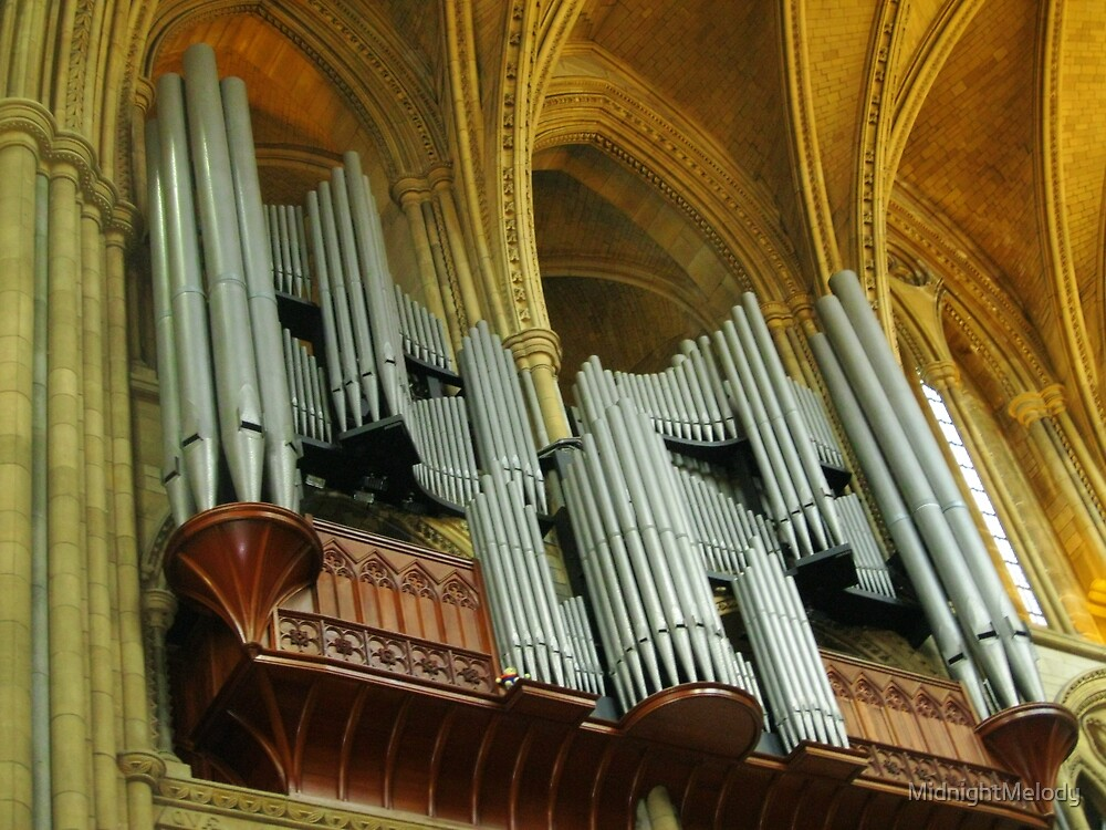 Organ Pipes, Truro Cathedral by MidnightMelody