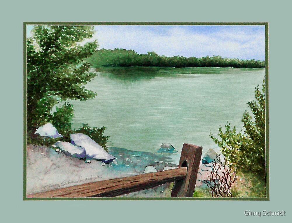 Lake Seminole by Ginny Schmidt