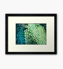 Manipulation of peacock feathers Framed Print