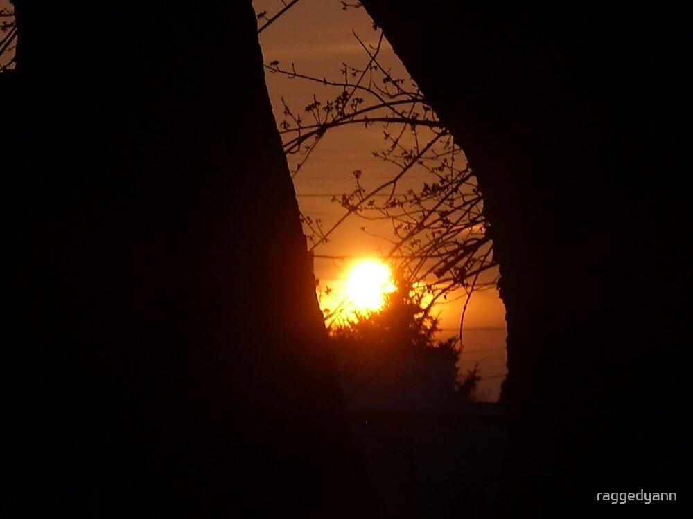 fiery sunset by raggedyann