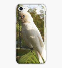 Australian Short Billed Corella iPhone Case/Skin