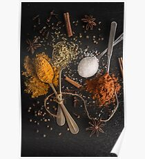 Various spices spoons Poster