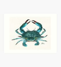 """Blue Crab"" by Amber Marine, watercolor painting, © 2013 Art Print"