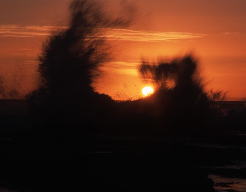 Sunset spray by matt mackay