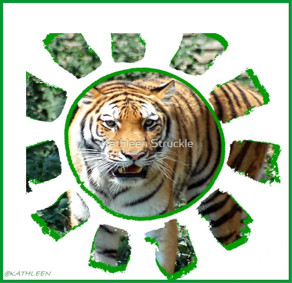 Tiger  by Kathleen Struckle