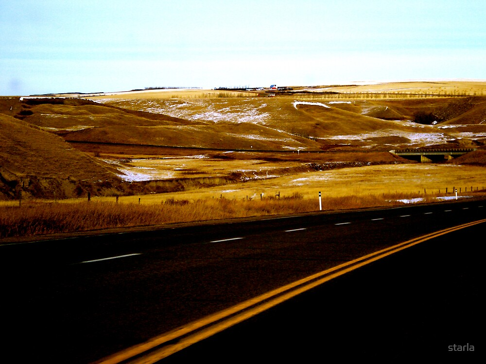 Beyond the Side of the Road by starla
